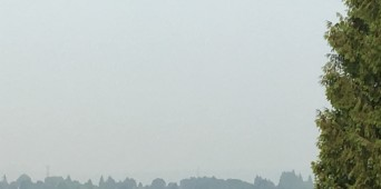 View through the Smoke