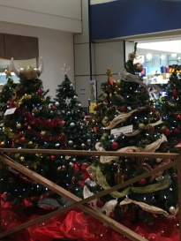 Trees at the Mall