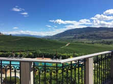 pool view at burrowing owl